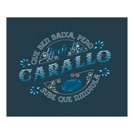 Camiseta Nikis Galicia Sube Que Nin Diola Unisex